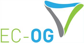 CFD & FSI-RG Collaboration